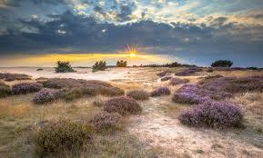 national parks images National parks in the netherlands jpg