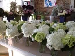sams club wedding flowers hydrangeas from sam s club flowers hydrangea and