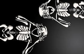 Halloween Cat Skeleton Cute Ghost Wallpaper Wallpapersafari Halloween Bats Backgrounds