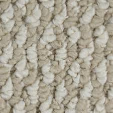 home decorators collection carpet sample bayfield color