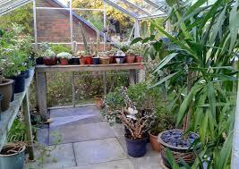 quirky bird gardener blog september 2014