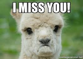 Llama Meme - 17 of the best i miss you memes top mobile trends
