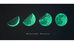 glow in the stickers wall decor home moon glow in the point decal sticker 3d