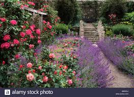 inverewe gardens poolewe scotland red climbing roses pergola