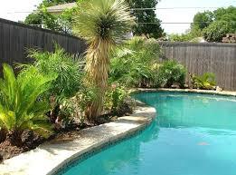 Backyard Swimming Pool Ideas Swimming Pool Landscaping Custom Swimming Pool Photo Swimming