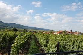 Bad Bergzabern Plz Freizeitangebote Hainfeld