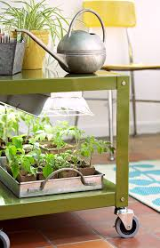 what is the best lighting for growing indoor guide to plant grow lights better homes gardens