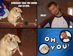 Oh You Meme Face - oh you the hilarious oh you meme