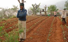 drip irrigation expanding worldwide u2013 national geographic blog