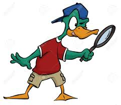 duck hunting images u0026 stock pictures royalty free duck hunting