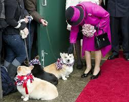queen elizabeth ii photos photos the queen greets some corgis