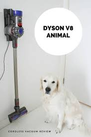 Dyson Vaccum Reviews Best 25 Cordless Vacuum Reviews Ideas On Pinterest Cordless