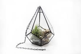 hanging terrarium large teardrop geometric stained glass