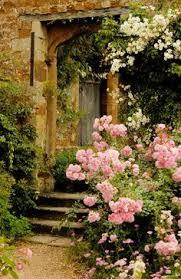 love the red climbing rose creating garden of eden pinterest