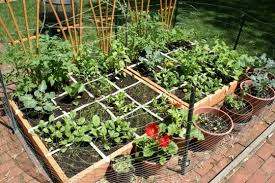 full image for small vegetable garden fence ideas raised bed