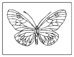 coloring pictures of small butterflies butterfly coloring page printable coloring page of butterfly