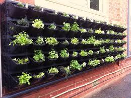 vertical vegetable garden plants home outdoor decoration