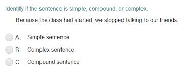 sentence quizzes turtle diary