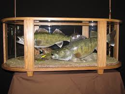 Wildlife Home Decor by Unique Fish Coffee Table 65 On Home Decoration Ideas With Fish