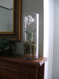 Big Floor Vases Home Decor by Using Round Cylinder Clear Glass Extra Tall Vase For Orchid