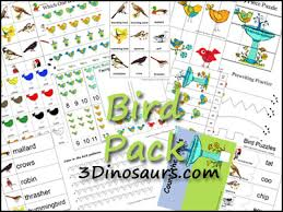 3 dinosaurs bird pack