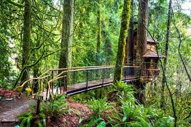 Treehouse Point Wa - sleep underneath the forest canopy at this epic treehouse in