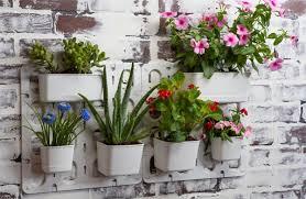 Vertical Garden For Balcony - mini vertical garden kits make easy cactus u0026 succulent gifts