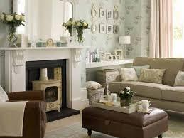 interior extraordinary living room narrow living room idea