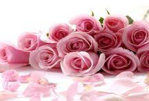 flower delivery jacksonville fl call in same day flower delivery jacksonville fl flowerdeliveryj