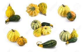 collection of matured miniature ornamental pumpkins often used