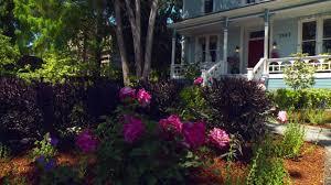 landscaping ideas for curb appeal video hgtv