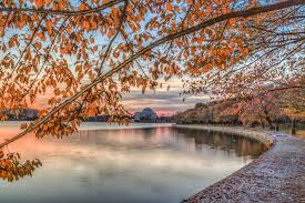 Maryland scenery images Fall foliage in washington d c maryland and virginia jpg