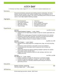 resume summary exles marketing marketing job resumes europe tripsleep co