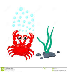 cute red crab with water bubbles and seaweeds vector illustration