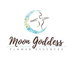 modern colorful logo design for selena meure by lohgoh design