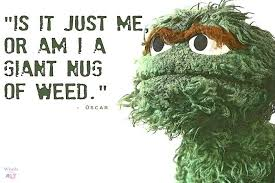 Oscar The Grouch Meme - national grouch day 2017 memes best jokes funny photos