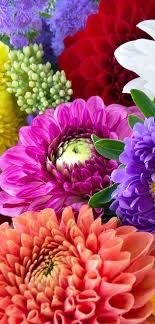 flowers online online flowers