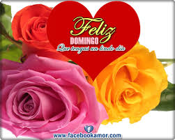 imagenes de amor para el domingo bonitas imágenes con frases de feliz viernes sábado y domingo