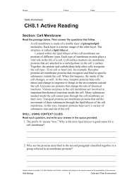 ch8 1 active reading section cell membrane
