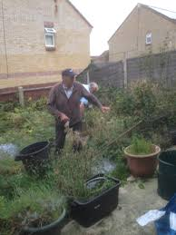 thursday 7th september 2017 poole men u0027s shed clear overgrown