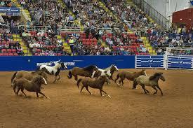 gambar struktur kawanan amerika serikat penunggang kuda