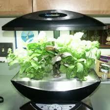 herb garden indoor indoor herb garden plus indoor vegetable garden plus indoor herb