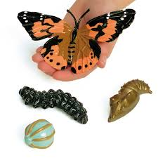 painted lady butterfly life cycle figure set from early years