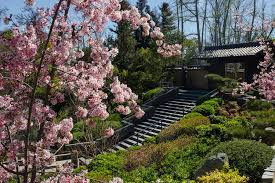 What Time Does The Botanical Gardens Close by Japanese Gardens In Los Angeles And Where To Find Them
