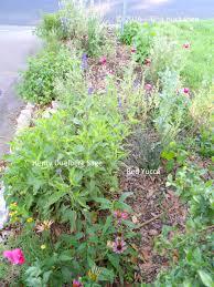 Rock Garden Perennials by Mixed Perennial Garden My Gardener Says U2026