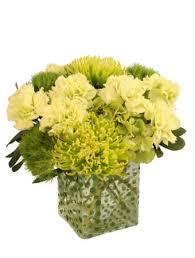 Lafayette Florist Green Envy Arrangement In Lafayette La Flowers By Rodney