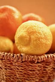 cuisiner le fruit de l arbre à images gratuites arbre la nature fruit aliments produire