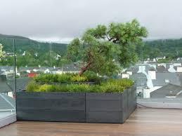 garden planter shop