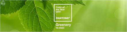 pantone color of the year 2017 announcement how to stay trendy with pantone s colour of the year 2017 houzify