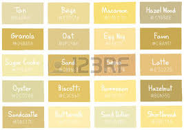 colour shades with names tan tone color shade background with code and name illustration